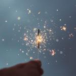 Vuurwerk en huisdieren
