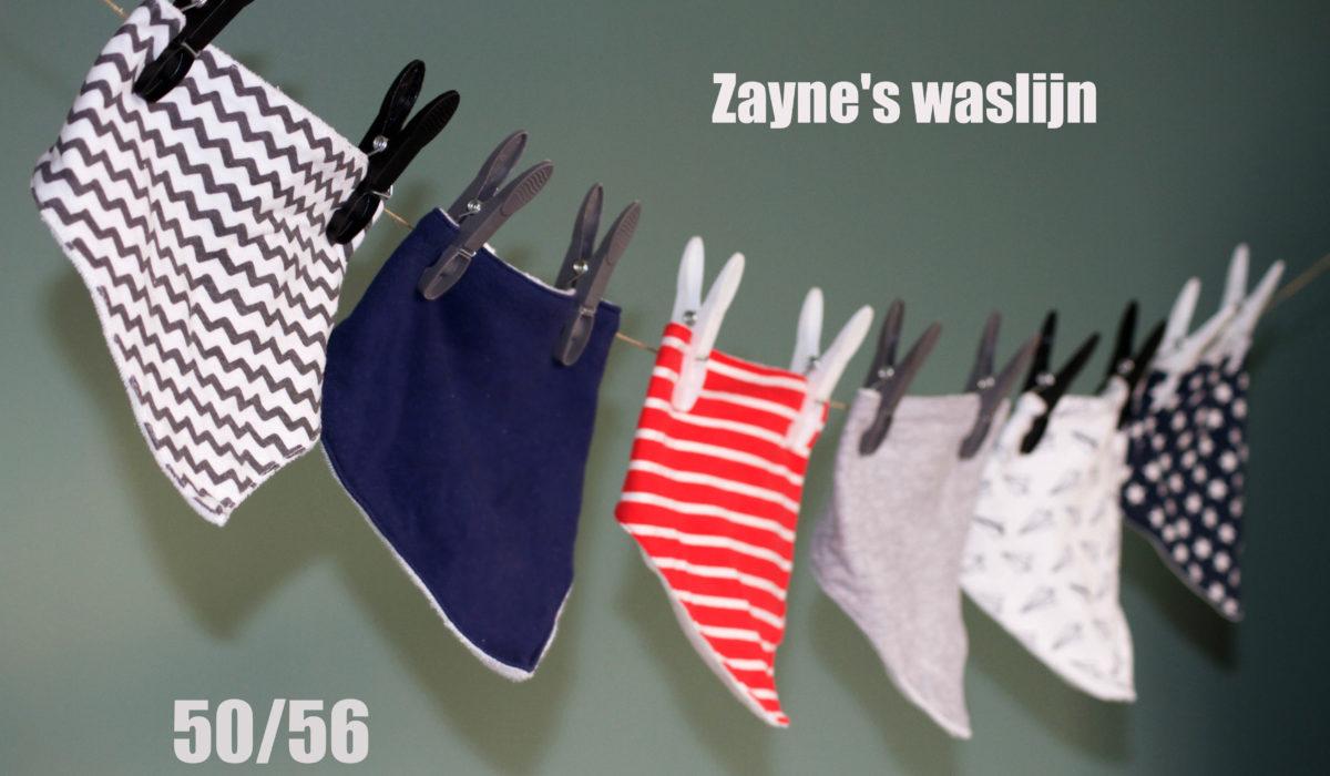 De waslijn van Zayne 50/56